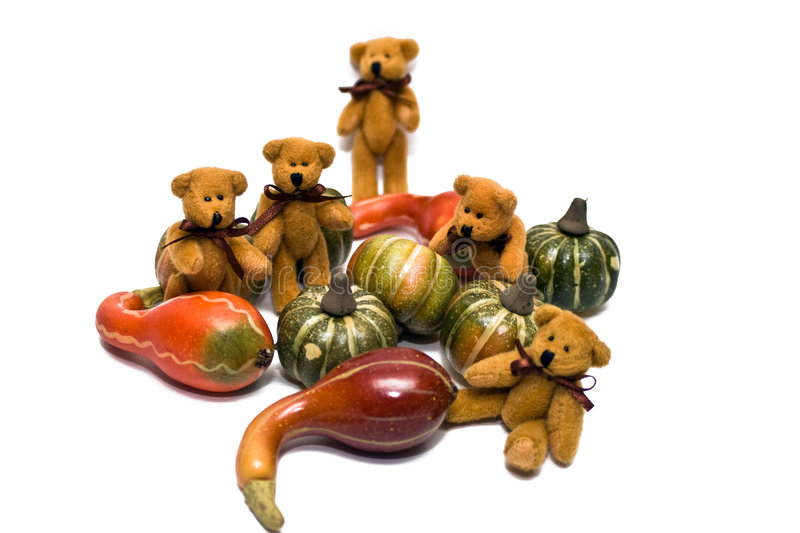 Bears and Gourds. Bears gathering gourds on a white background royalty free stock photo