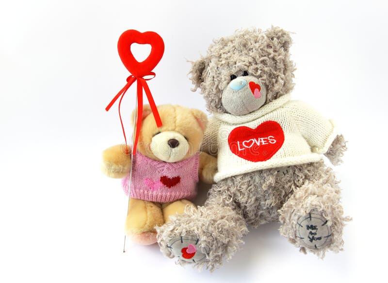 bears heart two arkivfoton