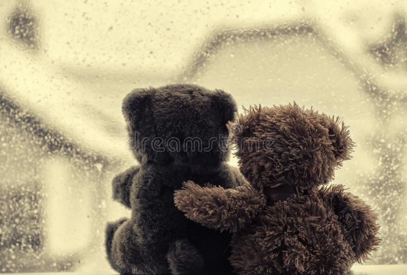 Download Bears In Love's Embrace, Sitting In Front Of A Window Stock Image - Image of plush, couple: 37193645