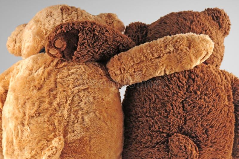 beary αγαθό φίλων στοκ εικόνα με δικαίωμα ελεύθερης χρήσης