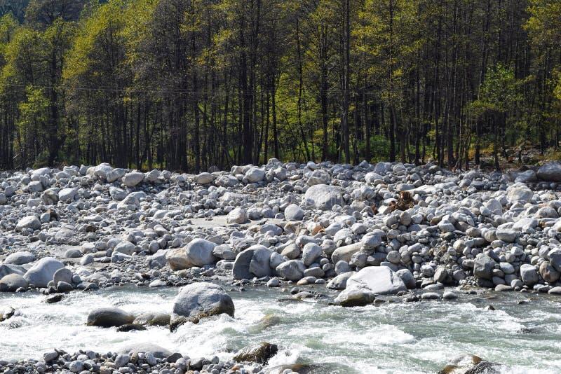 Beas River flowing through woods of manali royalty free stock image