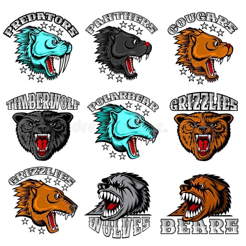 Beast face from the side and front view with bared teeth. Panther, cougar; bear, wolf, polarbear, grizzly, predator. Logo for any sport teams isolated on white stock illustration
