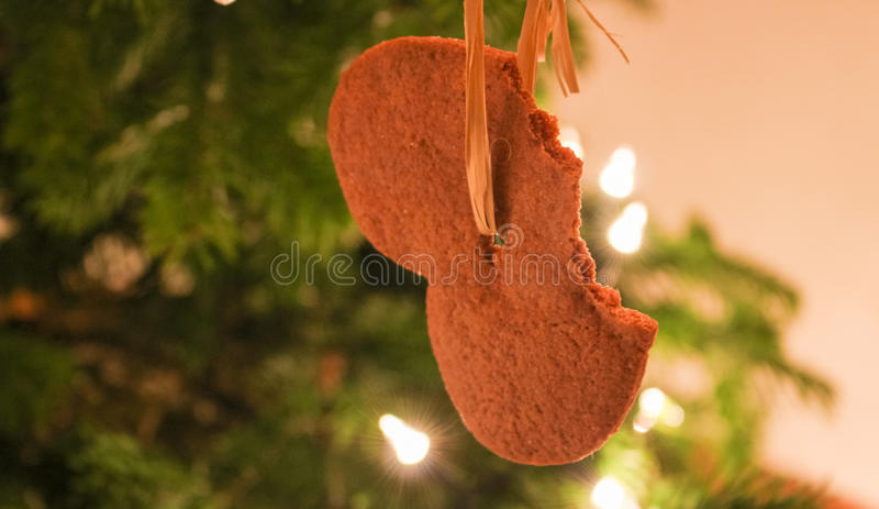 Beaten homemade gingerbread on christmas tree royalty free stock images