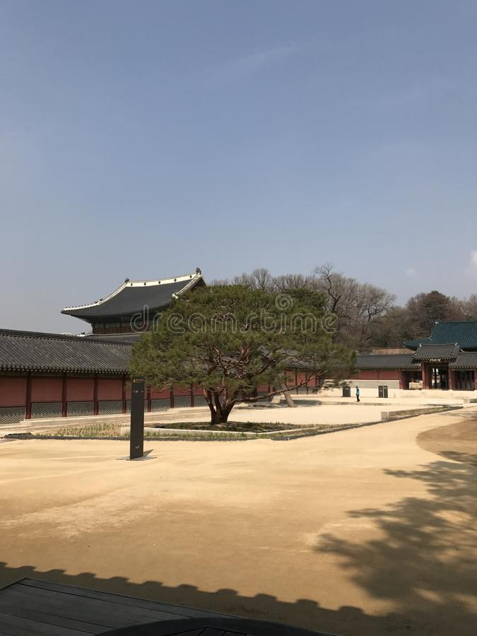 Beatiful Changdeokgung Palace ground, Seoul South Korea stock images