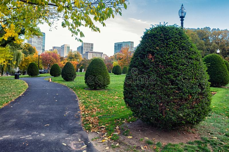 Beatiful clipped bush and colorful trees in fall season in Boston Garden. USA stock photography
