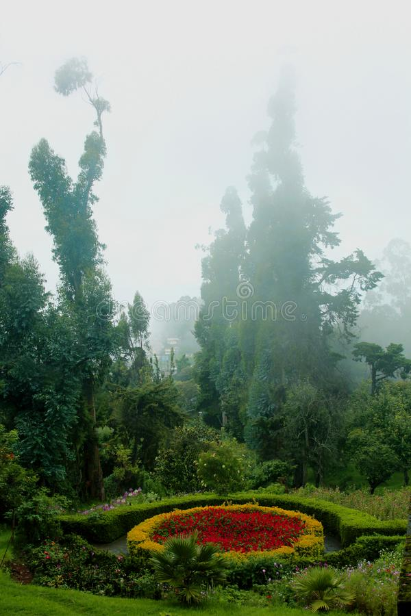Beatiful designed park flower bed with mist the bryant park. Beatiful designed park flower bed with mist in the bryant park. Kodaikanal is a city near Palani in stock photography