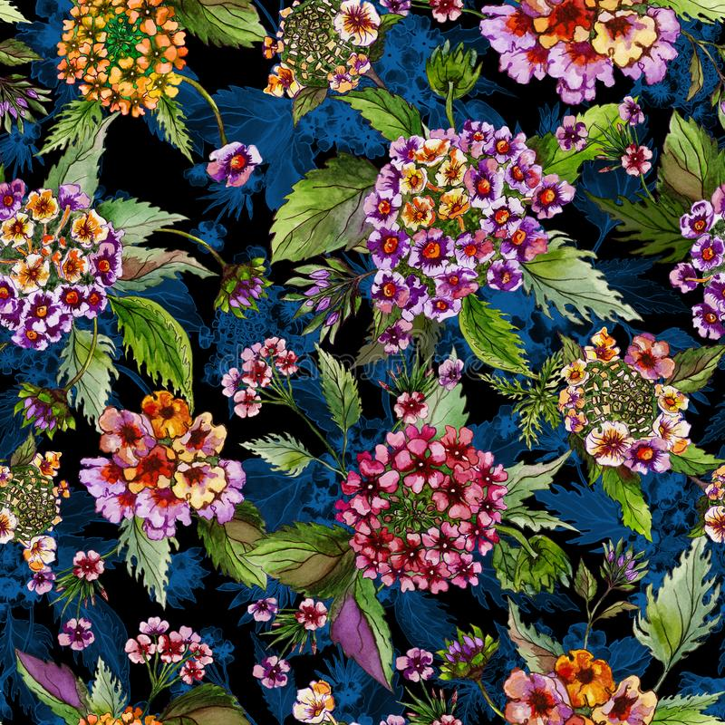 Beatiful lantana flowers with green leaves on black and blue background. Seamless floral pattern. Watercolor painting. stock illustration