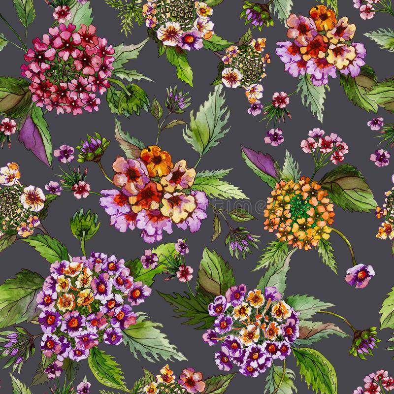 Beatiful lantana flowers with green leaves on grey background. Seamless floral pattern. Watercolor painting. stock illustration