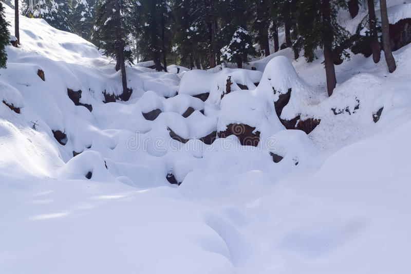 Beatiful snow scape in Dalhousie. Dalhousie a beautiful hill station in Himachal Pradesh royalty free stock photography