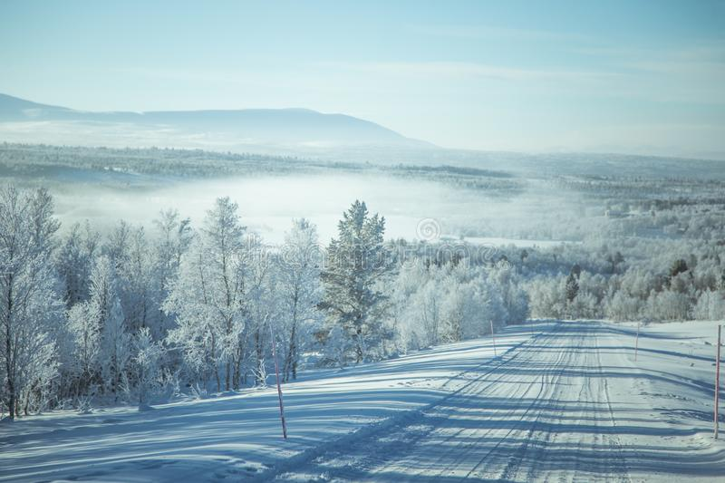 A beatiful winter scenery with a road. Woods in Norway. royalty free stock images