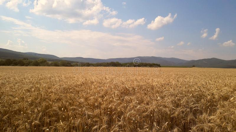 Beatuful country stock photography