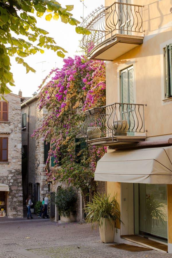 Beau bâtiment décoré des fleurs roses également connues sous le nom de peu de bouganvillée image libre de droits