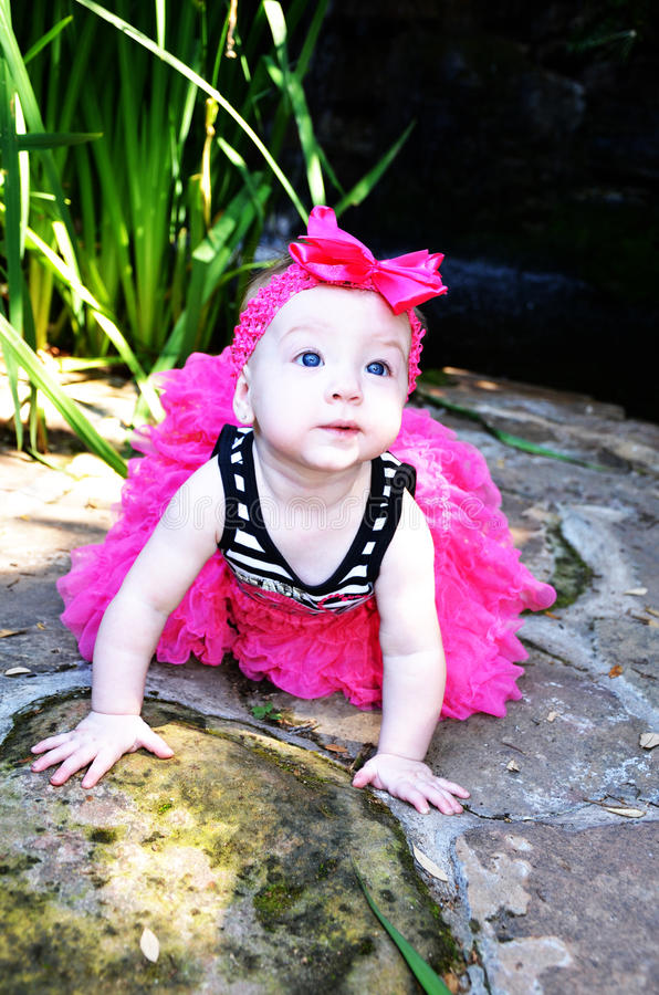 Beau bébé avec l'arc rose photos libres de droits