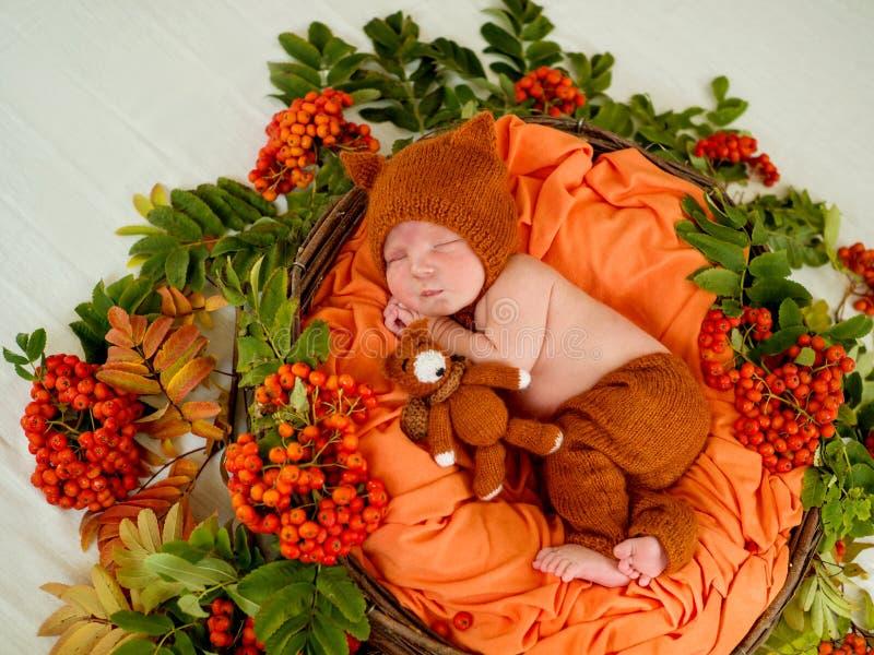 Beau bébé nouveau-né dans un panier avec les groupes oranges de cendre de montagne image libre de droits