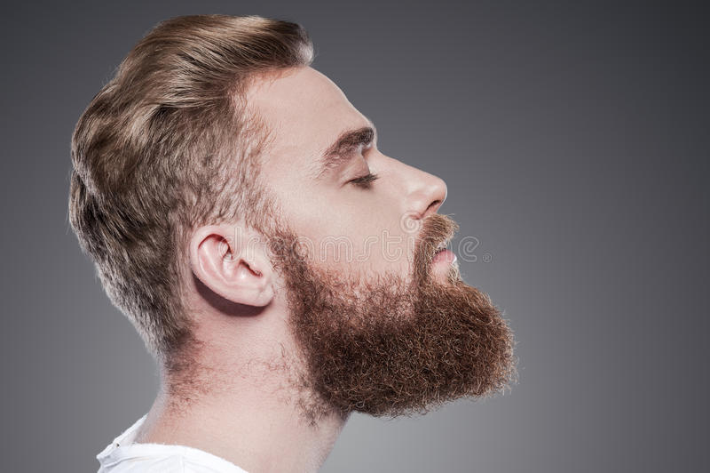 Beau barbu photo libre de droits