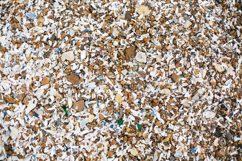 Beau beaucoup de coquillages et de pierres et de vue supérieure de roche sur la plage sablonneuse sur l'île tropicale Les coquill image libre de droits