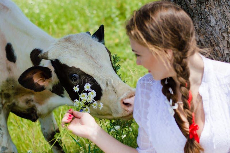 Beau boire et vache de fille de jeune femme photos stock