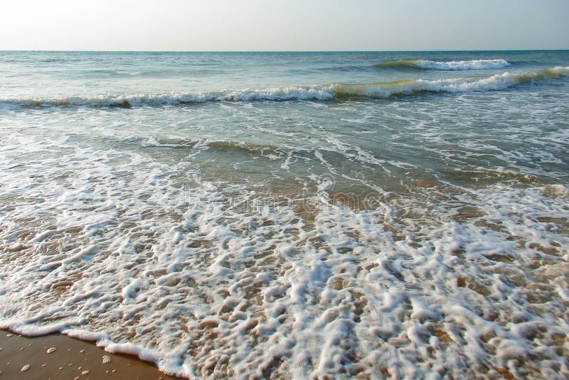 Beau bord de la mer de colorfull avec la mousse photos libres de droits