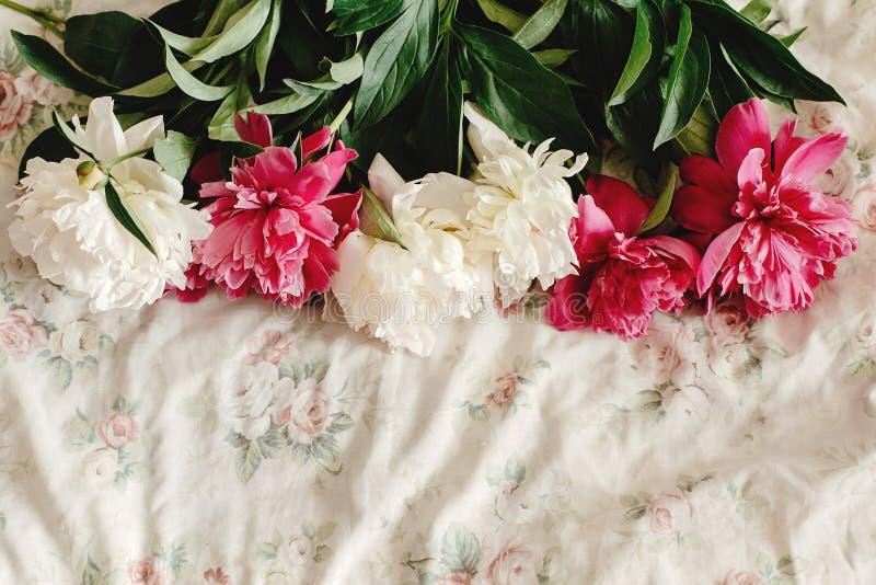 Beau bouquet coloré de pivoine sur le lit floral pendant le matin, s photos stock