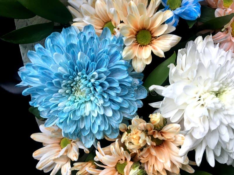Beau bouquet de différentes fleurs lumineuses colorées illustration de vecteur
