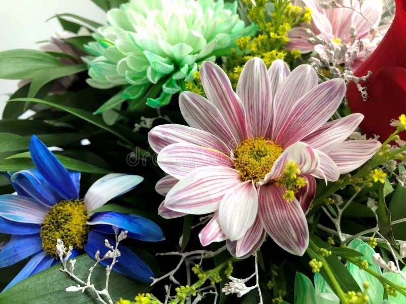 Beau bouquet de diff?rentes fleurs lumineuses color?es image stock