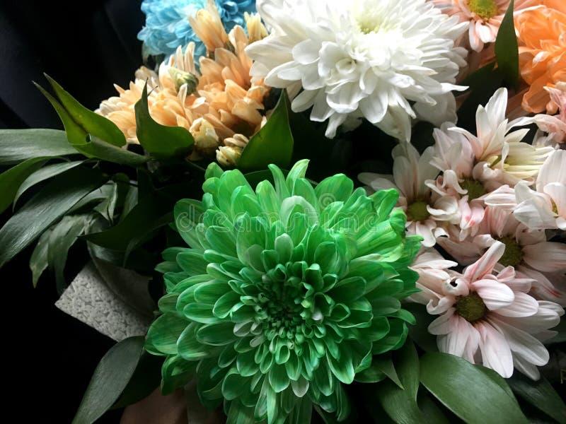 Beau bouquet de diff?rentes fleurs lumineuses color?es images libres de droits