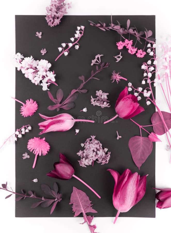 Beau bouquet des fleurs dans le vase d'isolement photo libre de droits