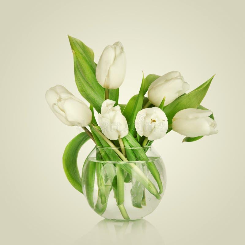 beau bouquet des fleurs tulipes blanches photo stock image du beau blanc 50258854. Black Bedroom Furniture Sets. Home Design Ideas