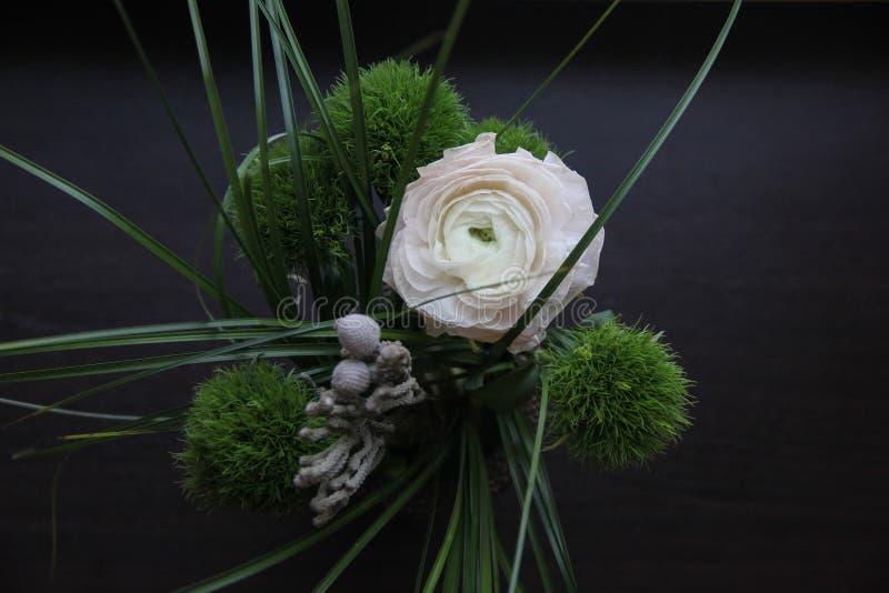 Beau bouquet foncé avec l'oeillet pelucheux vert, un grand ranunculus doux et l'herbe sur le fond en bois noir photos libres de droits