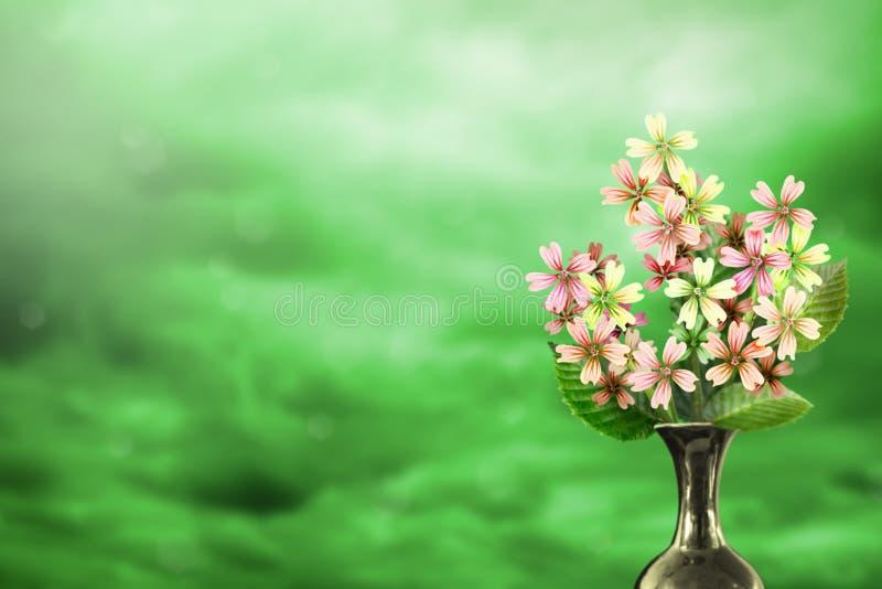 Beau bouquet vivant de bouquet de malva ou de mauve dans le vase en céramique avec l'endroit vide pour votre texte sur la gauche  images stock