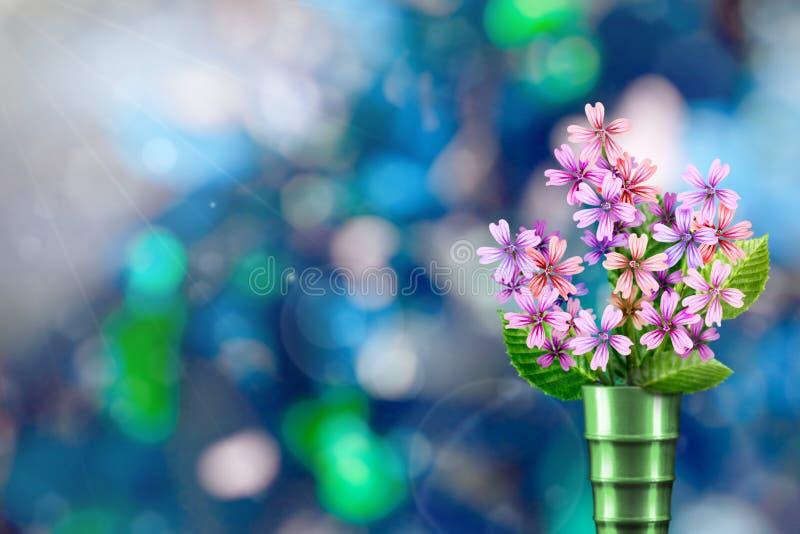 Beau bouquet vivant de bouquet de malva ou de mauve dans le vase moderne en métal avec l'endroit vide pour votre texte sur la gau image stock