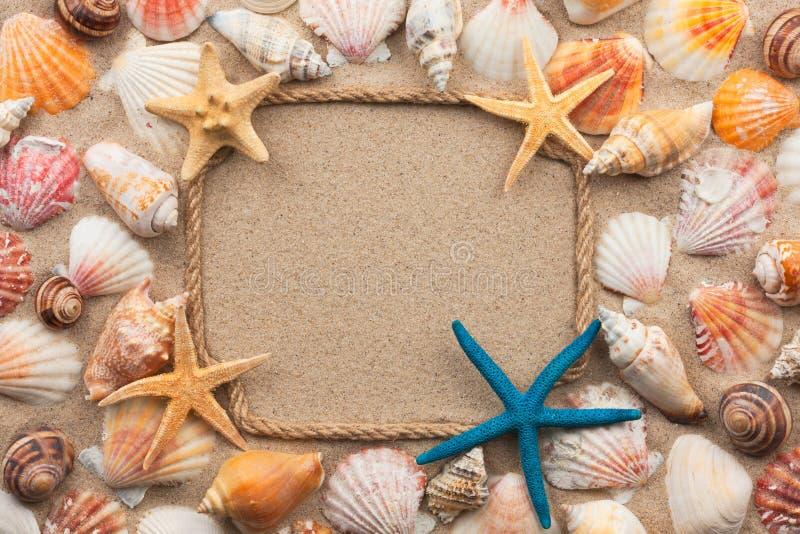 Beau cadre de la corde et des coquillages, étoile de mer sur le sable photo stock
