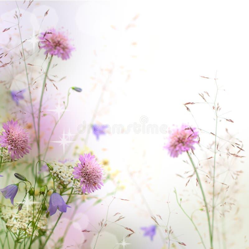 Beau cadre floral en pastel photographie stock