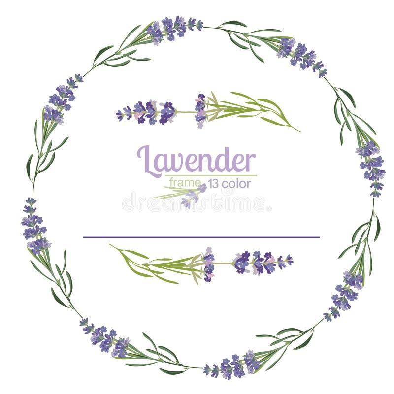 Beau calibre floral de cadres de Violet Lavender dans le style d'aquarelle d'isolement sur le fond blanc pour la conception décor illustration de vecteur