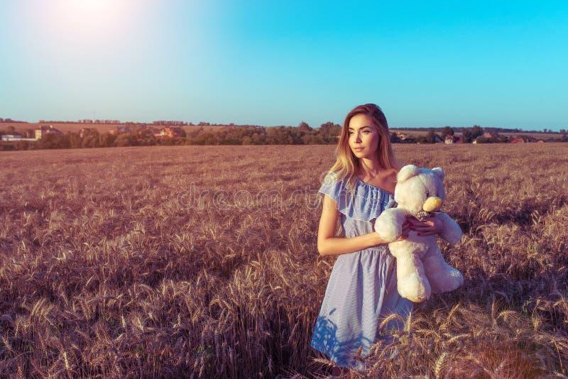 Beau champ de blé de femme d'été, robe bleue, mains d'ours de nounours de jouet pour enfants L'espace libre pour le texte Reposez image libre de droits