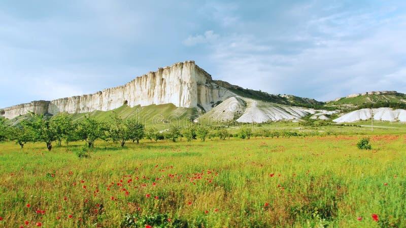 Beau champ rouge de pavot près de la haute falaise blanche dans le jour d'été contre le ciel nuageux gris projectile Vue stupéfia image libre de droits