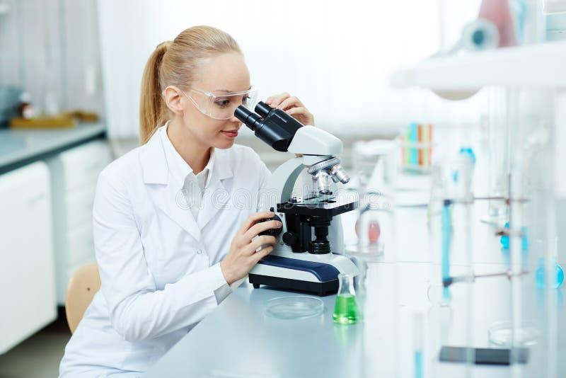 Beau chercheur féminin Working dans le laboratoire photographie stock