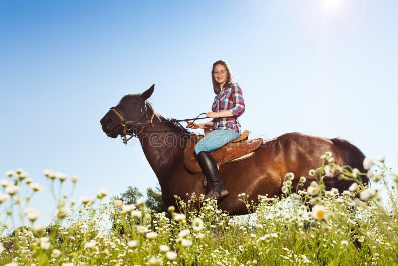 Beau cheval de baie d'équitation de fille dans la campagne photos stock
