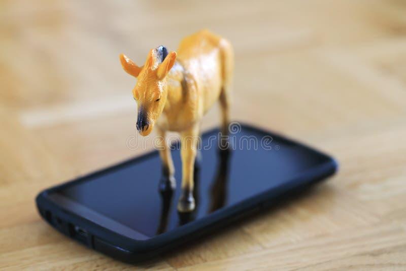 Beau cheval miniature, modèle en plastique de jouet sur l'écran du téléphone portable photographie stock