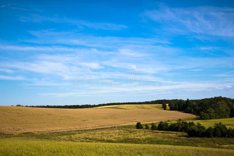 Beau ciel au-dessus d'un pré photos libres de droits