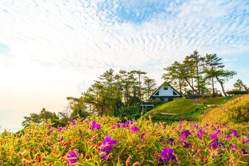 Beau ciel de lever de soleil avec le jardin sur la montagne chez Huai Nam Dang National Park photo stock
