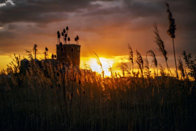 Beau coucher de soleil avec construction industrielle en arrière-plan images libres de droits