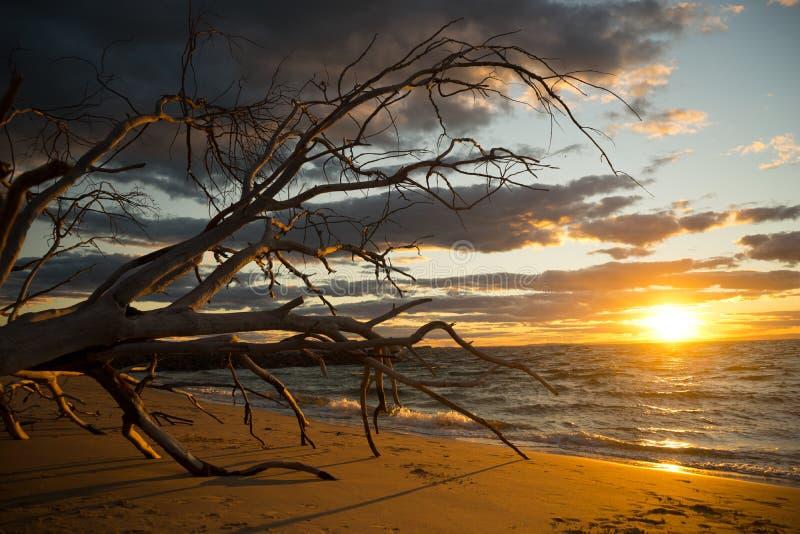 Beau coucher du soleil à l'Australie du nord d'île de Stradbroke photographie stock libre de droits