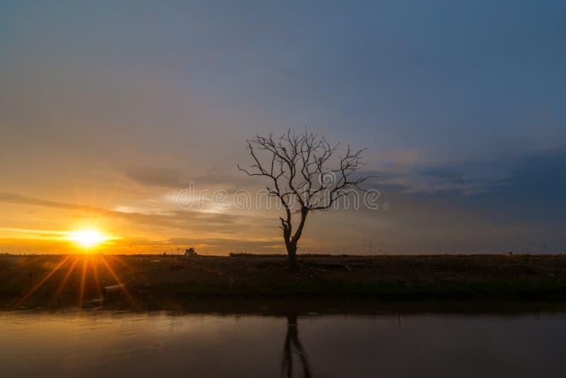 Beau coucher du soleil à la rive avec la lumière du soleil d'or romantique image stock