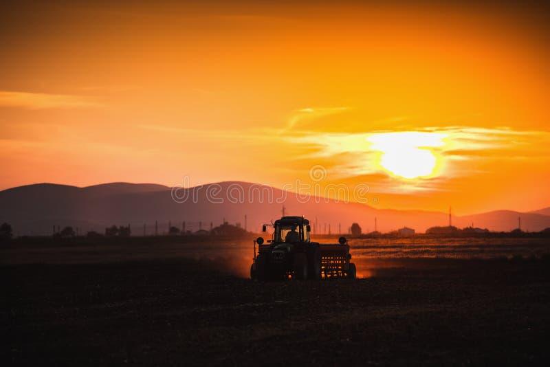 Beau coucher du soleil, agriculteur dans le tracteur préparant la terre avec le semis images libres de droits
