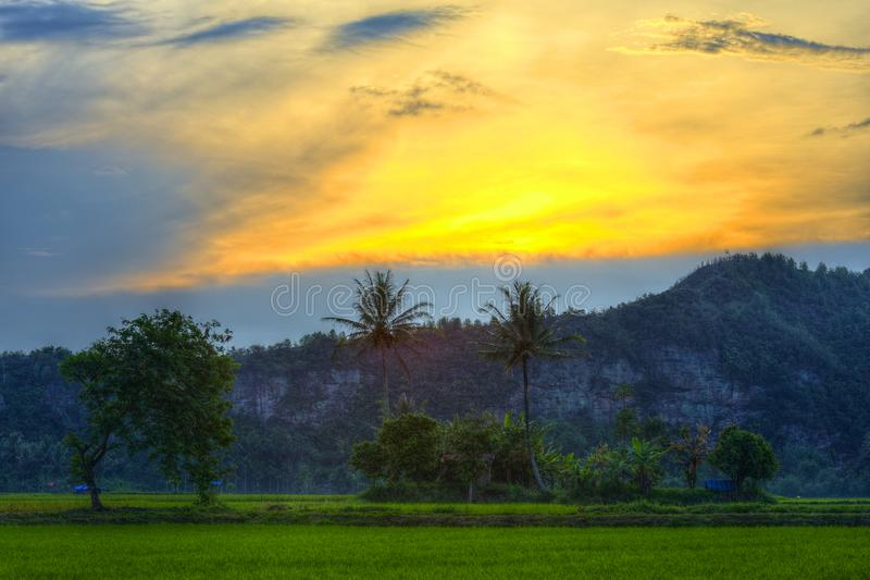 Beau coucher du soleil antique derrière les nuages et la colline avec les plantes vertes et les arbres photo libre de droits