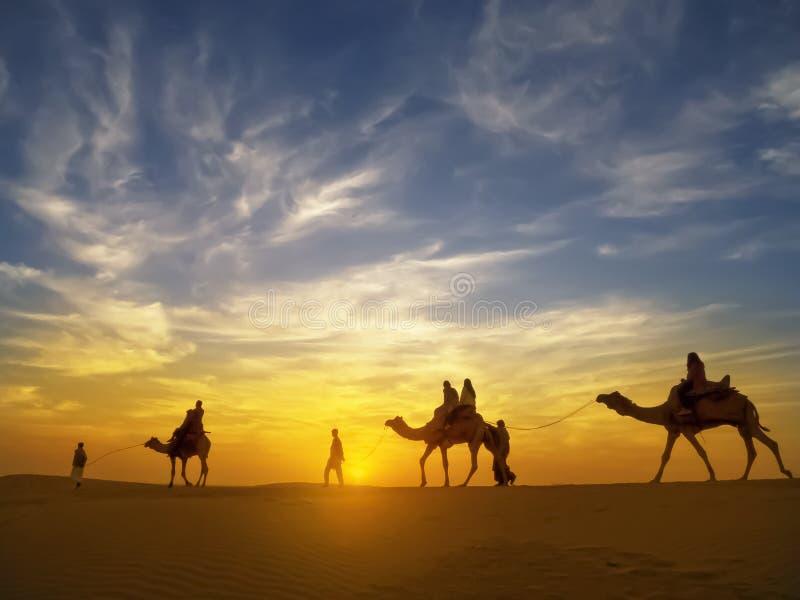 Beau coucher du soleil au désert de Thar, Jaisalmer, Inde photos libres de droits