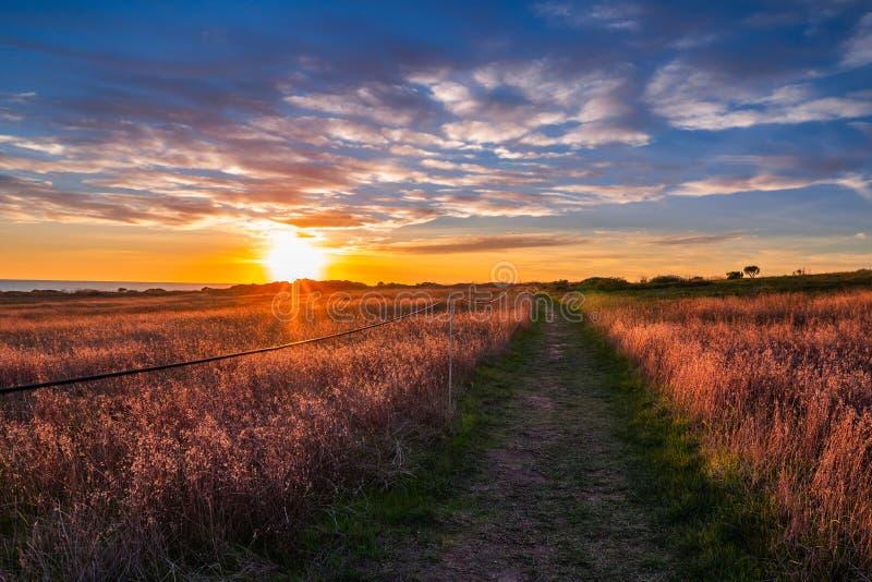 Beau coucher du soleil au-dessus du champ avec le sentier piéton de littoral photo libre de droits