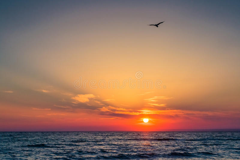 Beau coucher du soleil au-dessus de la Mer Noire pendant l'été L'oiseau volant au-dessus de l'eau Paysage de mer photo stock