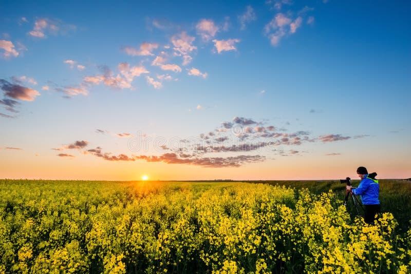 Beau coucher du soleil au-dessus du gisement de graine de colza image stock